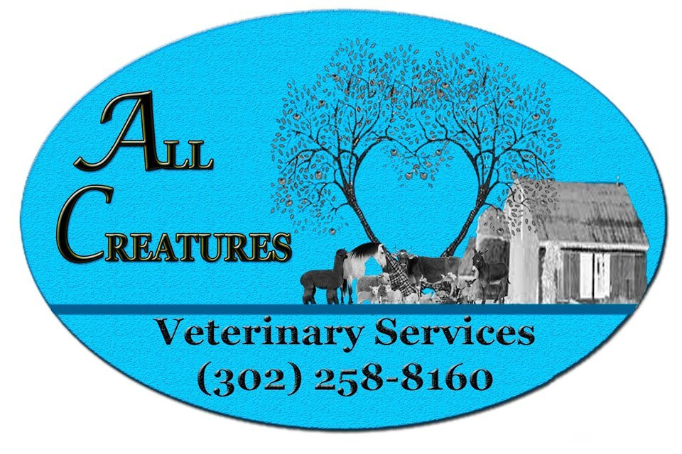 All Creatures Veterinary Service: 6902 Milford Harrington Hwy, Harrington, DE