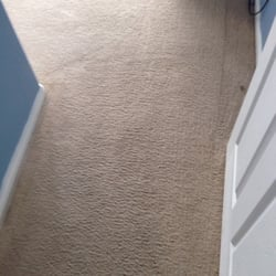 Home Carpet Cleaning Ideas Contractors