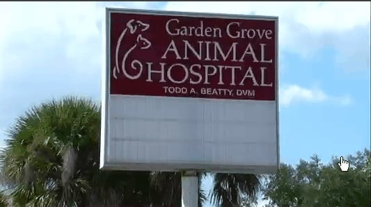 Photos for Garden Grove Animal Hospital Yelp