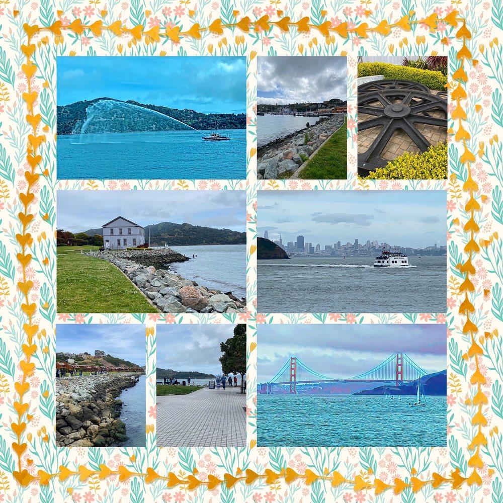 Shoreline Park: Tiburon Boulevard / Paradise Dr, Tiburon, CA