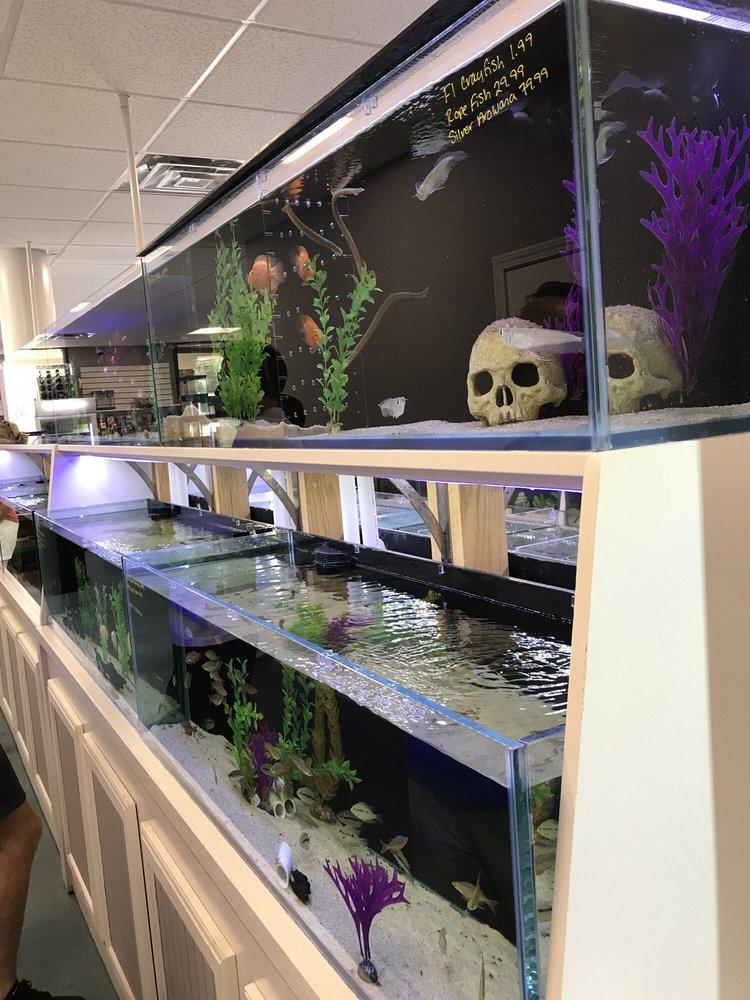 Southern Aquatics Local Fish Store: 620 Holcomb Bridge Rd, Roswell, GA