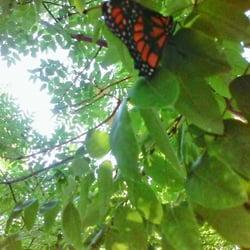 Photo Of Conservation Garden Park   West Jordan, UT, United States ...