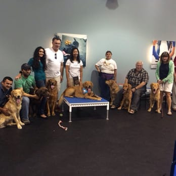 Zoom Room Dog Training - CLOSED - 109 Photos & 52 Reviews - Pet ...