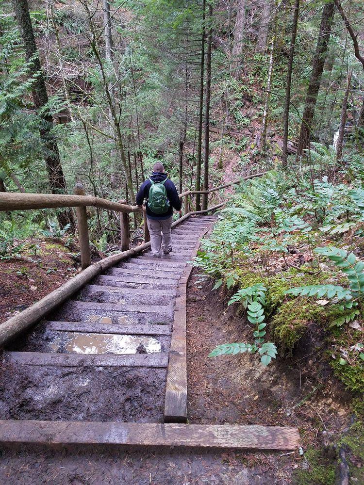 Hamilton Mountain Trail: Stevenson, WA