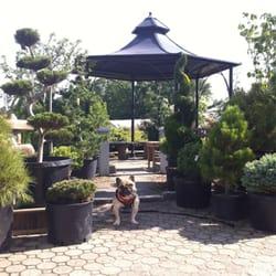 Sixteen Acres Garden Center Florists 1359 Wilbraham Rd