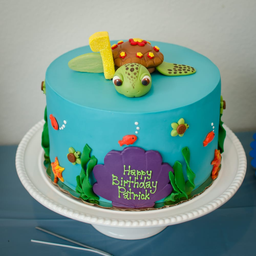 Squirt Turtle Cake Amazing Job On The Design And Yummy Passion