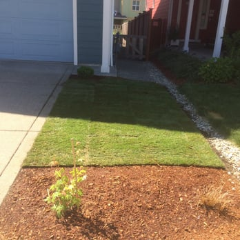 Photo Of Rickyu0027s Landscaping And Gardening Services   Seattle, WA, United  States. Finished
