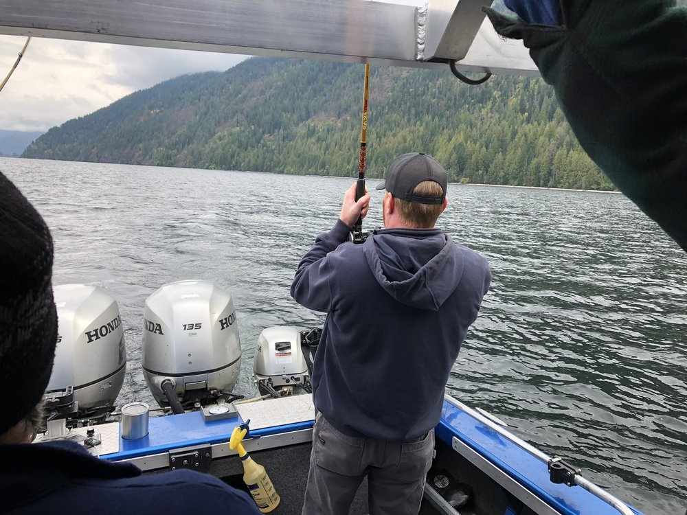 Pend Oreille Charters: 47392 Hwy 200, Hope, ID