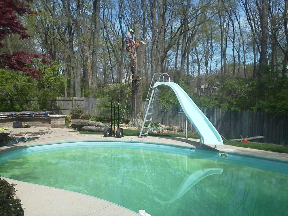 Great Dane Tree Experts & Landscaping: Ashley, OH