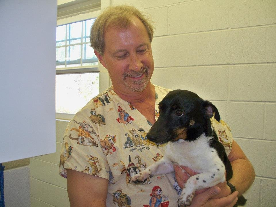 Brigadoon Animal Hospital: 1074 Cedar Point Blvd, Cedar Point, NC