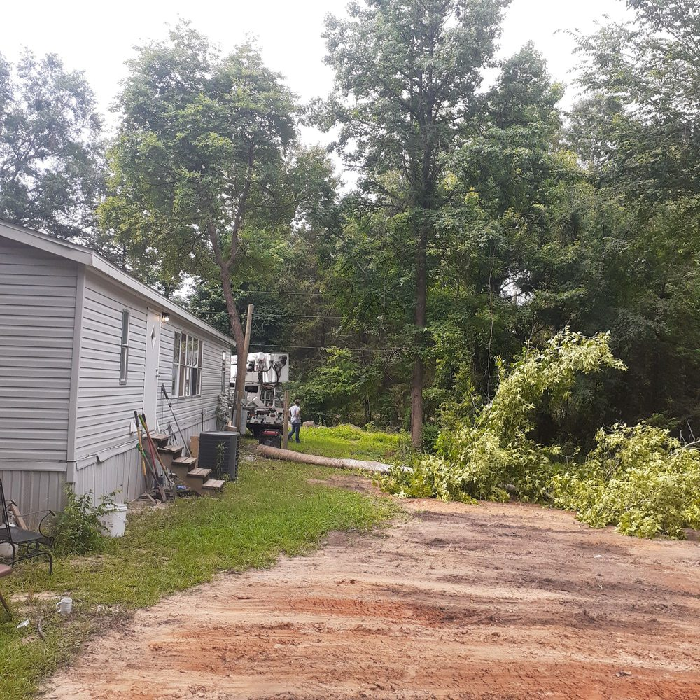 S&A Tree Service: 638 Lockerplant Rd, Gladewater, TX