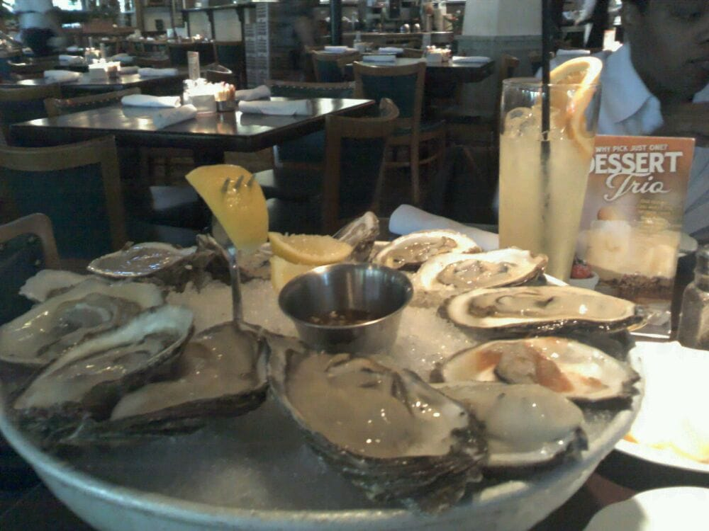 Oysters Oh I'm Going In