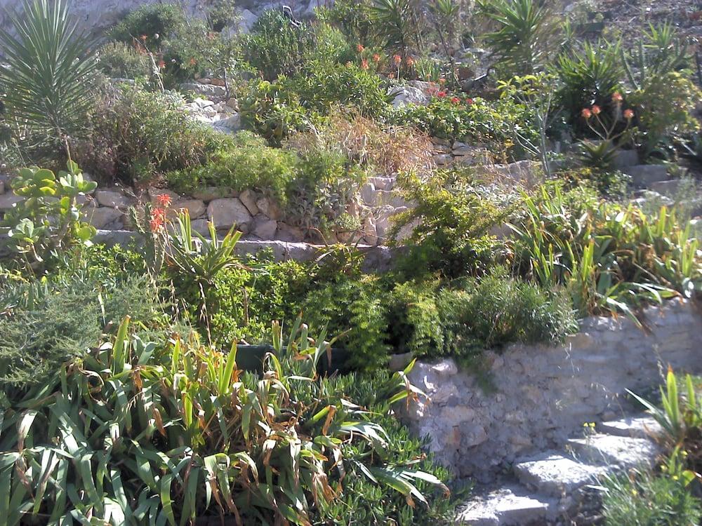 Jardin du vallon des auffes jardin botanique 11 rue du for Jardin 122 rue des poissonniers