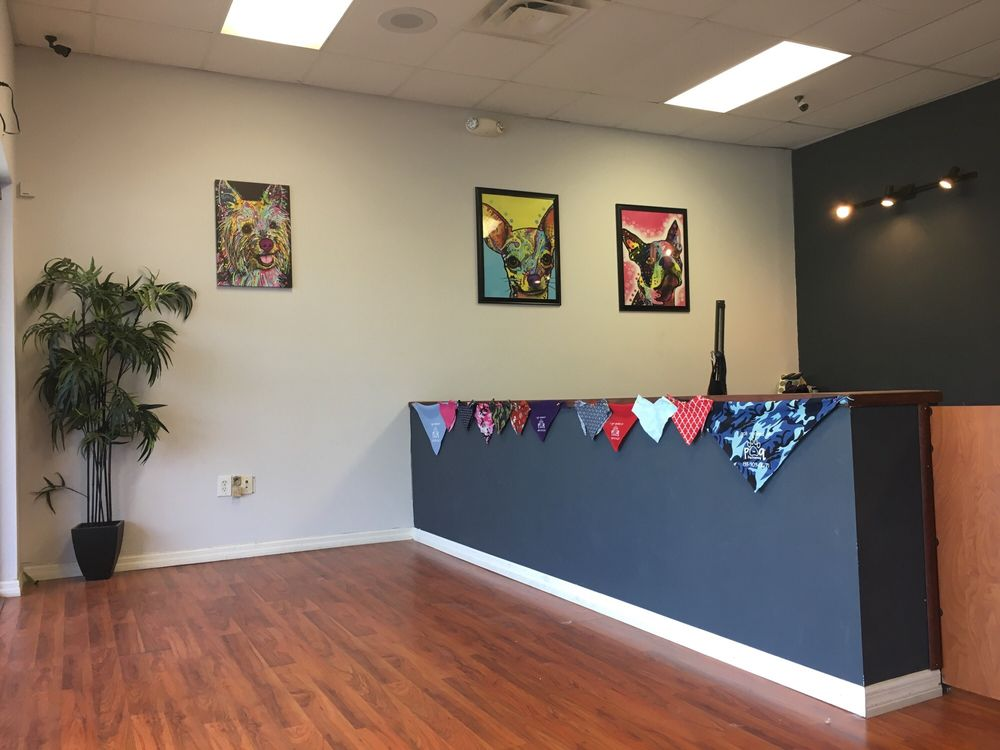 P's and Q's Dog Grooming: 18468 US Hwy 41 N, Lutz, FL