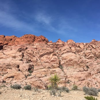 Red Rock Canyon - 3255 Photos & 722 Reviews - Hiking - 1000 Scenic ...