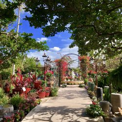 Photo Of Living Color Garden Center   Fort Lauderdale, FL, United States