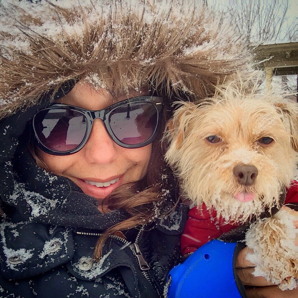 Leia's Dog Walking & Pet Care: Trumbull, CT
