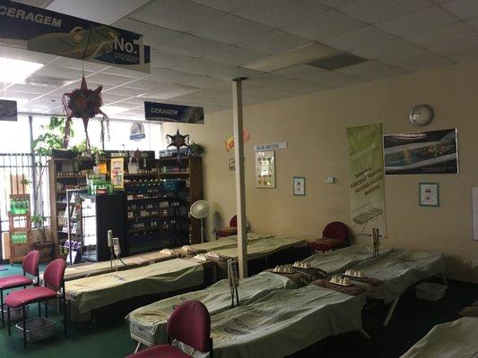 CERAGEM Wellness Center 910 S Hampton Rd b Dallas, TX Massage