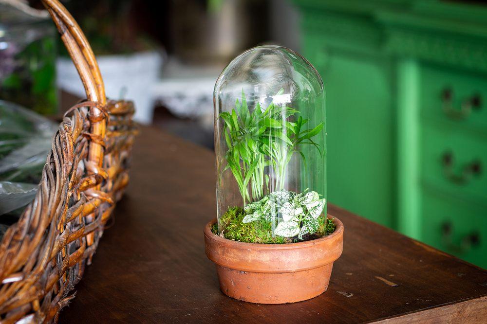 Portilla Home & Garden