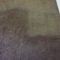 photo of affordable carpet cleaning phoenix az united states