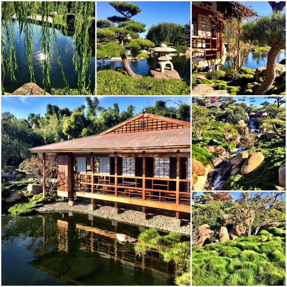 Photos For The Japanese Garden Yelp