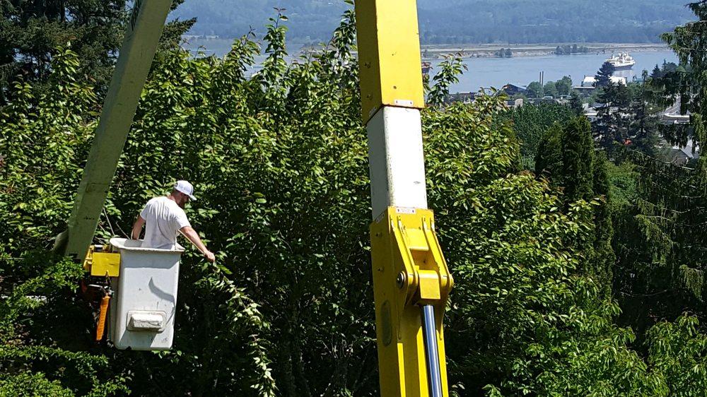 Titan Tree Care: 73796 Fern Hill Rd, Rainier, OR