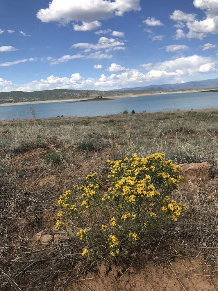 Lake Heron: Highway 95, Los Ojos, NM