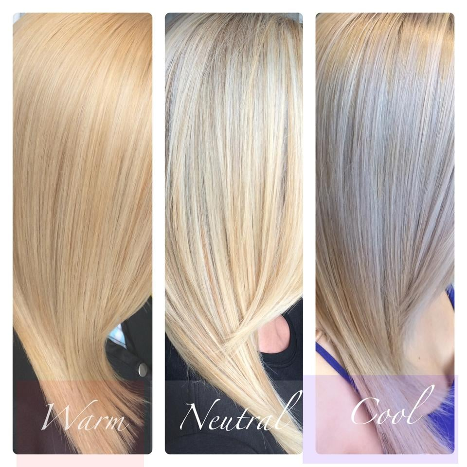 Warm Neutral Amp Cool Blonde Tones Yelp