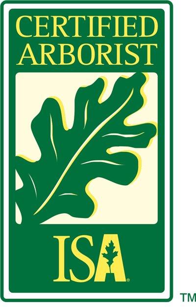 Best Trees & Landscaping: Wimauma, FL