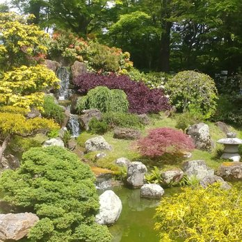 Japanese Tea Garden - 4284 Photos & 1226 Reviews - Tea Rooms - 75 ...