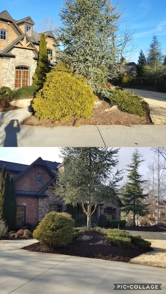 Evergreen Property Care: Ball Ground, GA
