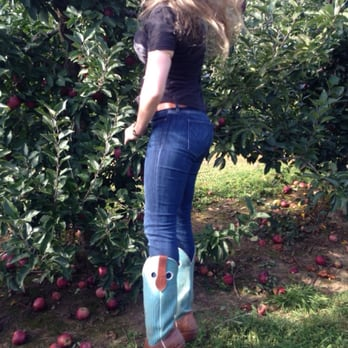 Linvilla Orchards 529 Photos 312 Reviews Markets 137 W