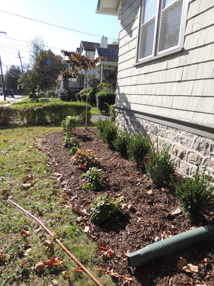 Small Foundation Planting In Delaware County Pa Yelp