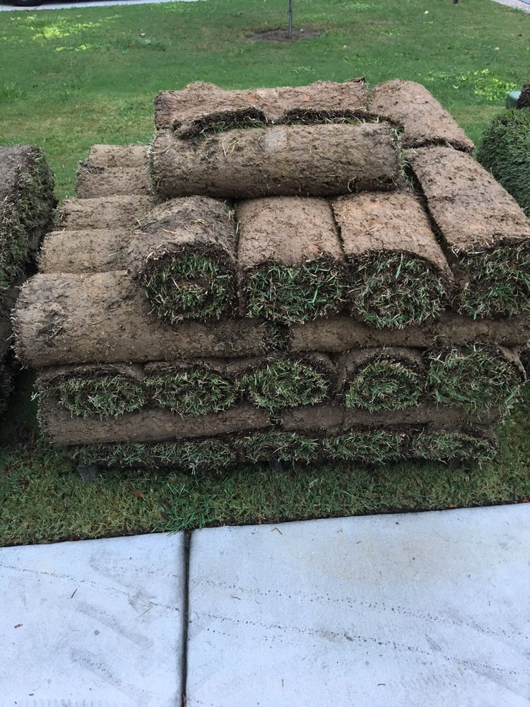 Carolina Turf Farms Inc: 1495 St Pauls Dr, Raeford, NC