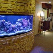 Beautiful ... Photo Of Living Art Aquatic Design   Los Angeles, CA, United States ...