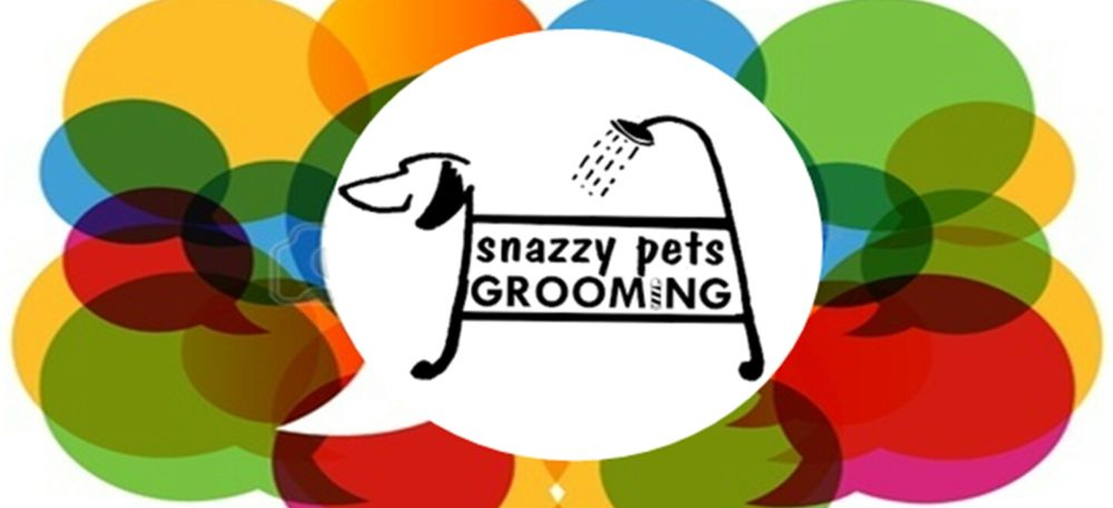 Snazzy Pets: 151 S State St, Belvidere, IL