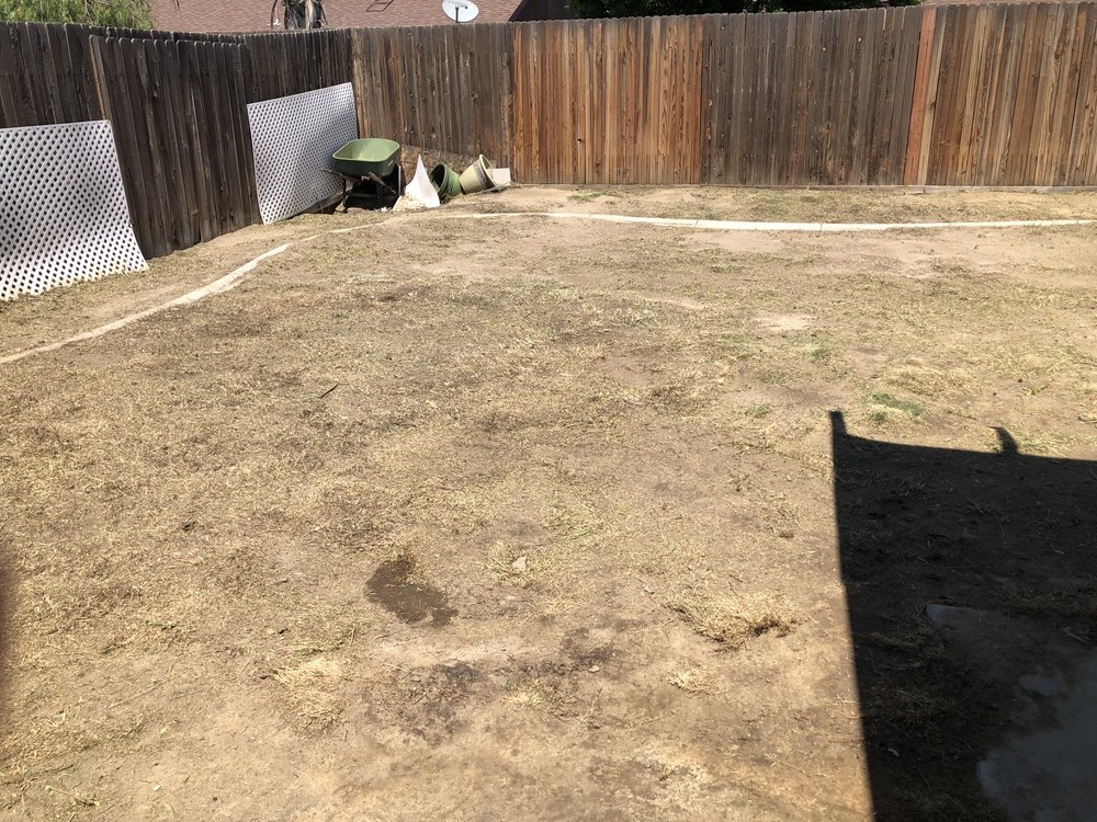 Carson's Gardening: Bakersfield, CA