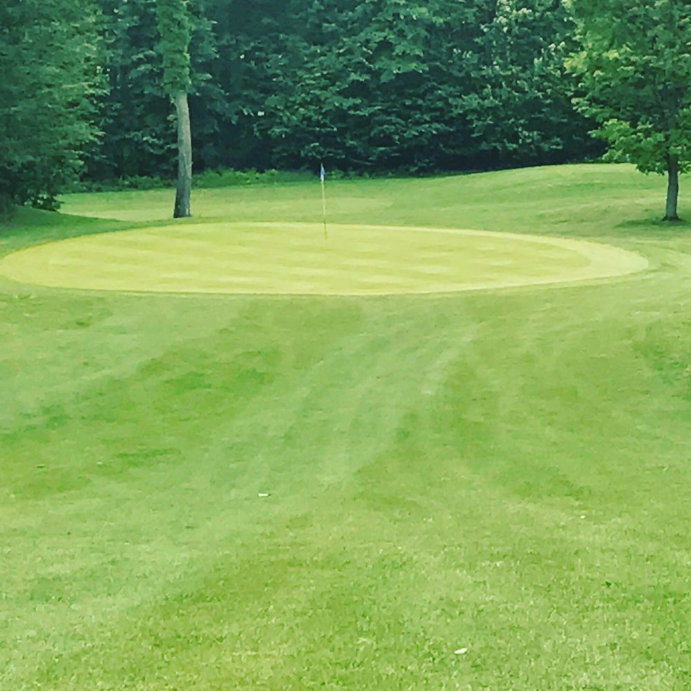 The Farm Golf Course: 3388 W Eddy School Rd, Bellaire, MI