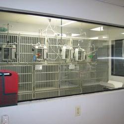 Garden Grove Animal Hospital Protomechgamecom