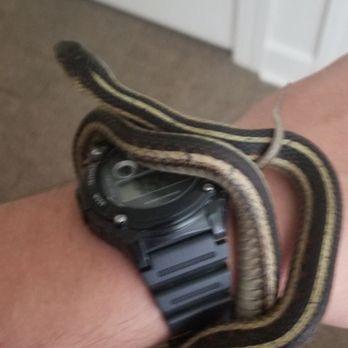 Underground Reptiles - 151 N Powerline Rd, Deerfield Beach, FL
