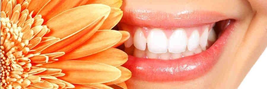Hauppauge Family Dental Care: Eugene Avrash, DDS: 111 Smithtown Byp, Hauppauge, NY