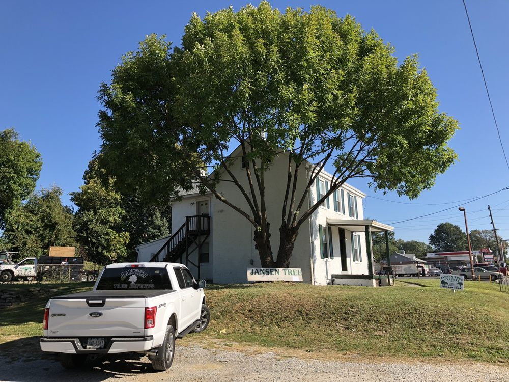 Jansen Tree Experts: 1317 Chester Pike, Crum Lynne, PA