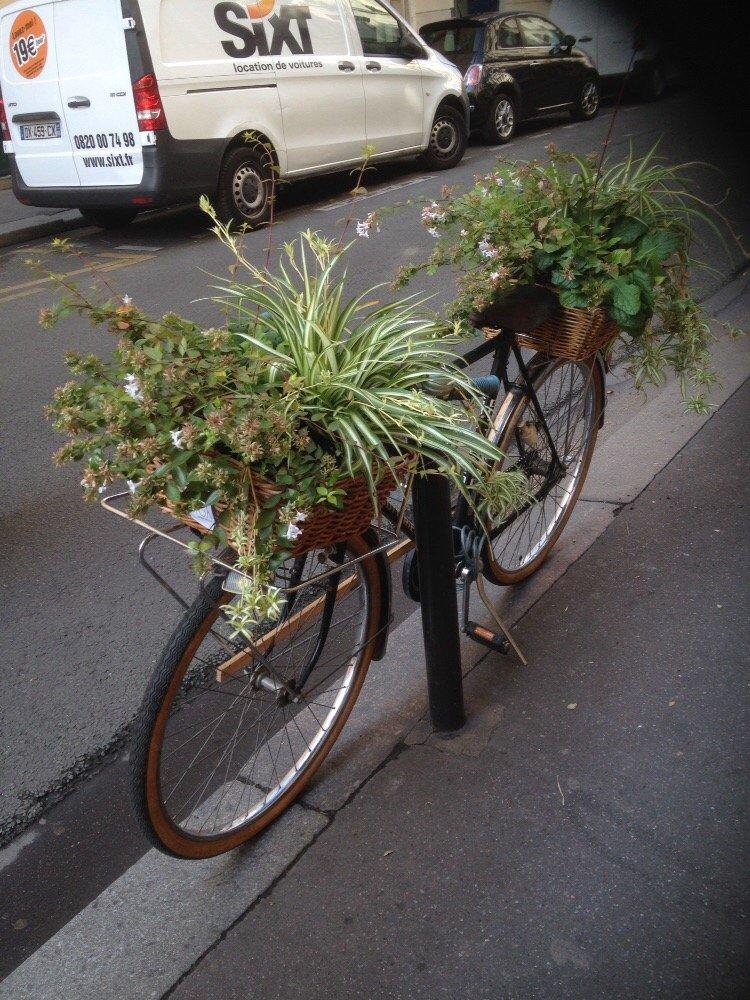 Vert l zard 12 photos fleuriste 5 rue beaurepaire r publique paris num ro de t l phone - Numero de telephone printemps haussmann ...