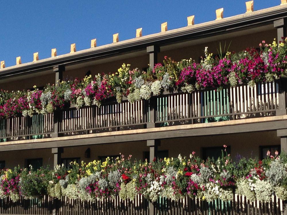 McCumber Fine Gardens: Santa Fe, NM