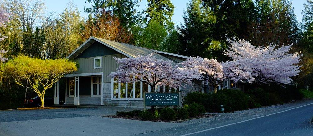Winslow Animal Clinic: 800 Ericksen Ave NE, Bainbridge Island, WA