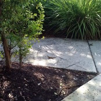 Tgi Fridays Palm Beach Gardens Fl