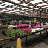 Photo Of Bates Nursery And Garden Center Nashville Tn United States