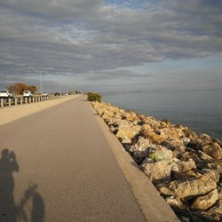 Courtney campbell causeway