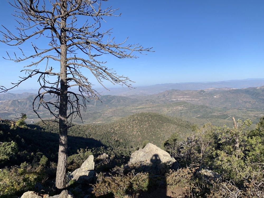 Mount Ord: Unnamed Rd, Rio Verde, AZ