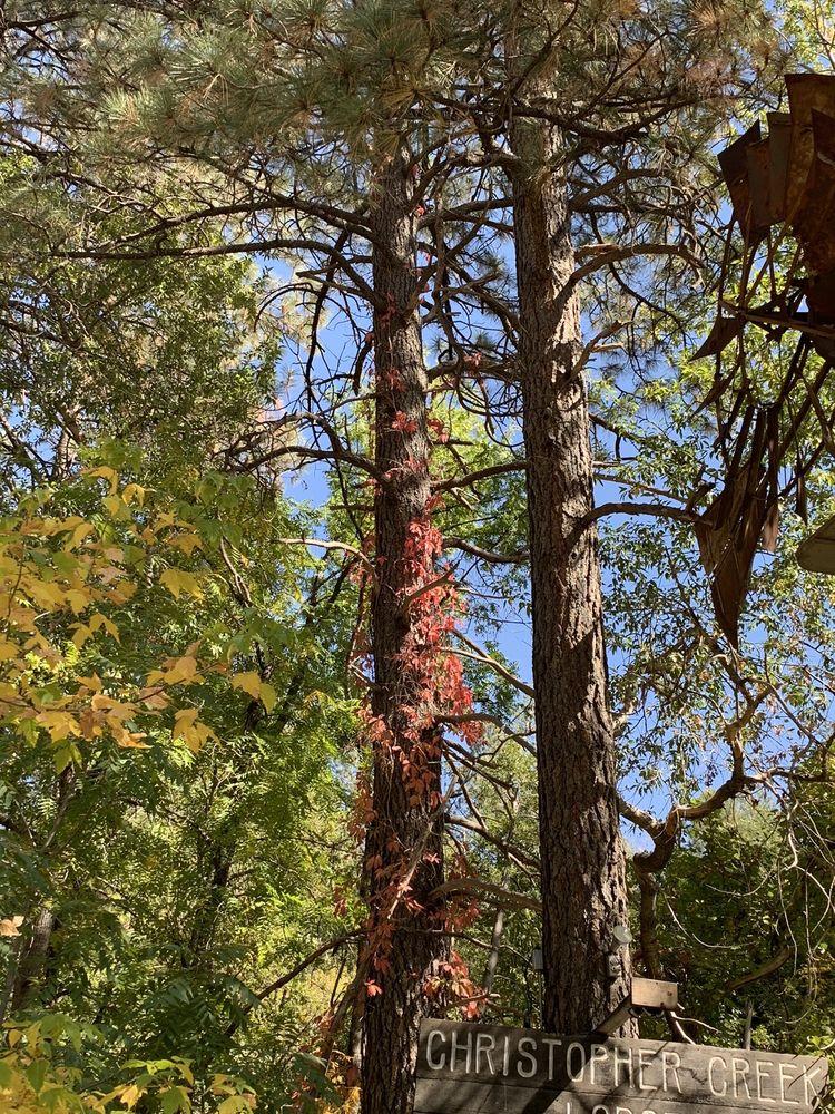 Christopher Creek Lodge: 1355 E Christopher Creek Lp, Payson, AZ